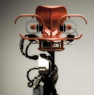 Trisk - a conversational robot